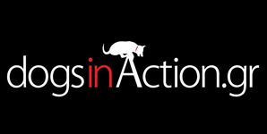 dogsinaction.png
